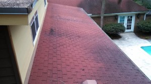 3/12 pitch roof with no attic exhaust.  Warped and dry-rotted plywood found in various places.