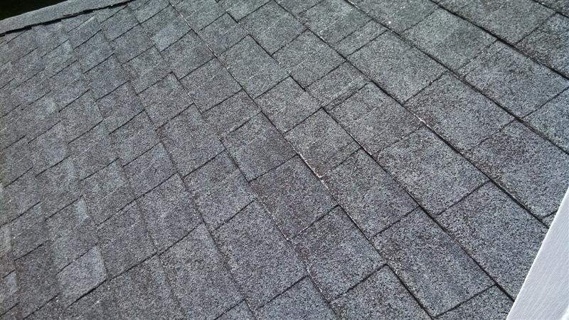How To Identify Common Roof Leak Problems Stubbs