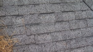 Roofing shingle granule loss